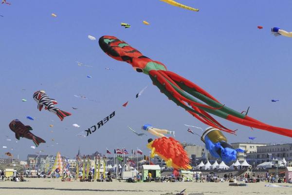 cerf-volant festival de Berck