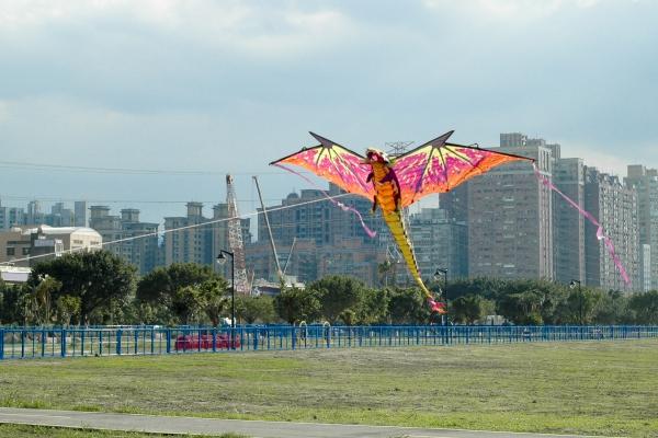 cerf-volant un dragon énorme