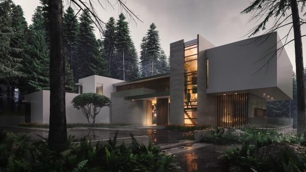 couleur façade maison tendance ensemble de niveaux disjoints