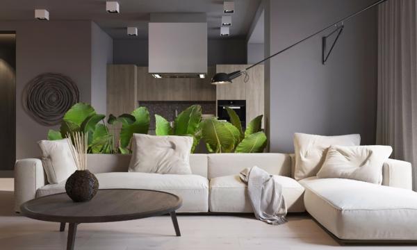 déco salon gris canapé blanc crème plantes vertes