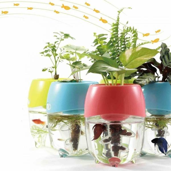 déco tendance avec plantes plante aquatique