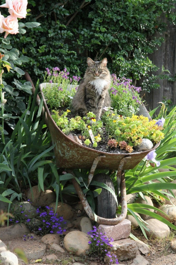 decorer son jardin avec des objets de recuperation ancienne brouette