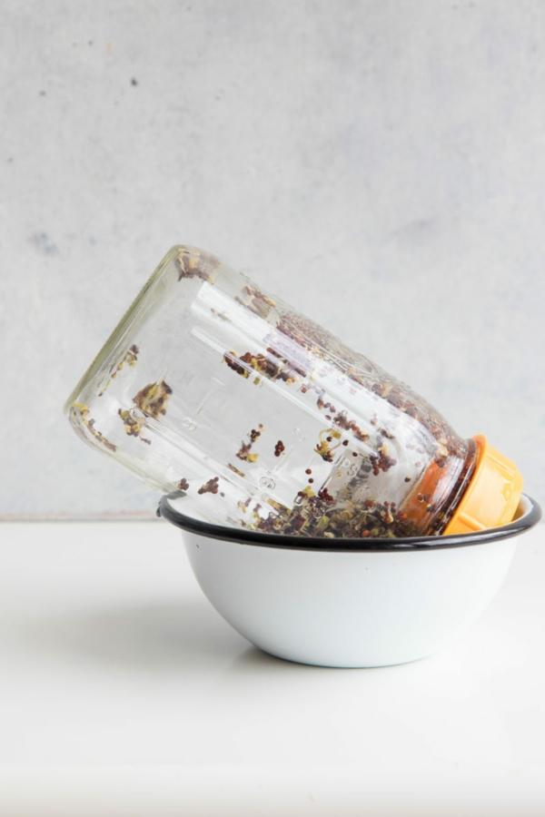diy graines germées bocal en verre
