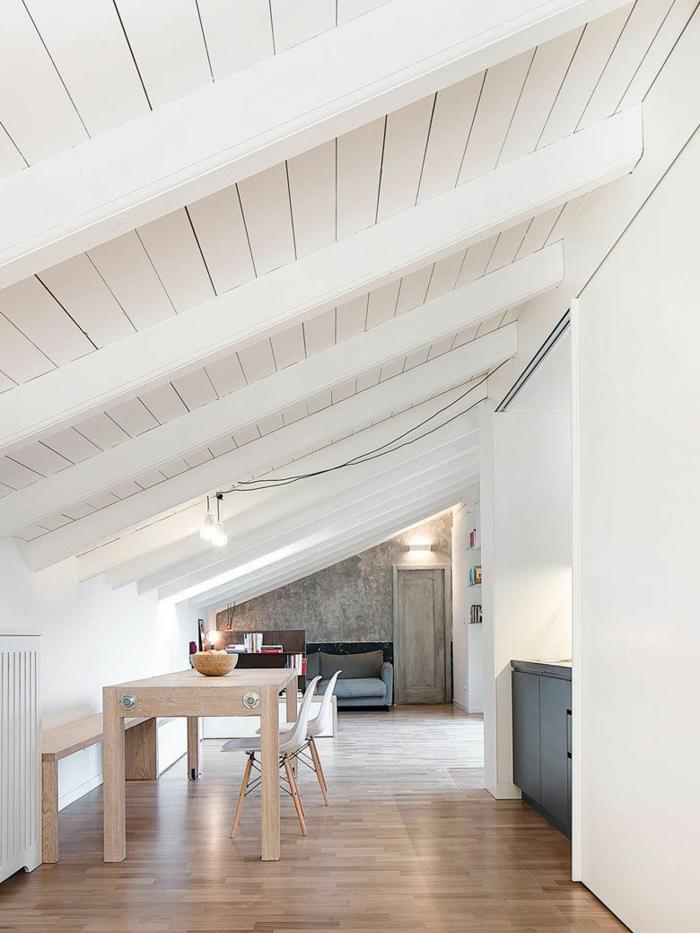 isoler sa maison et la toiture aussi