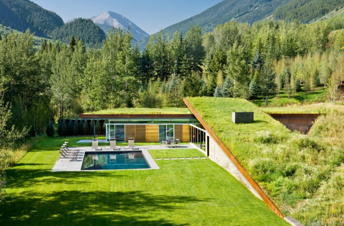 maison d' architecte contemporaine avec toiture végétalisée