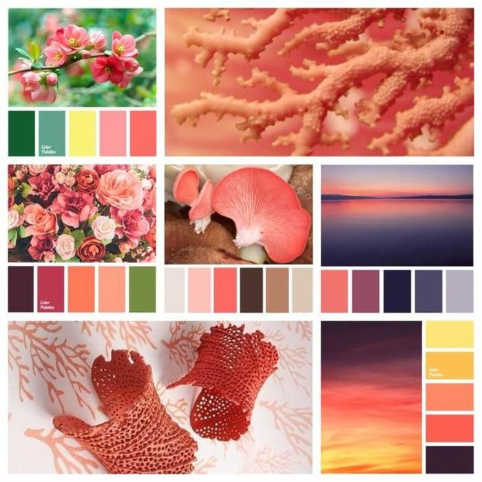 palette association couleur corail