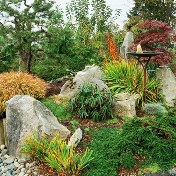 plante rocaille des pierres éparpillées
