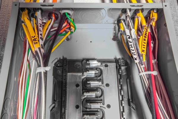 câbles électriques rongeurs dératisation maison