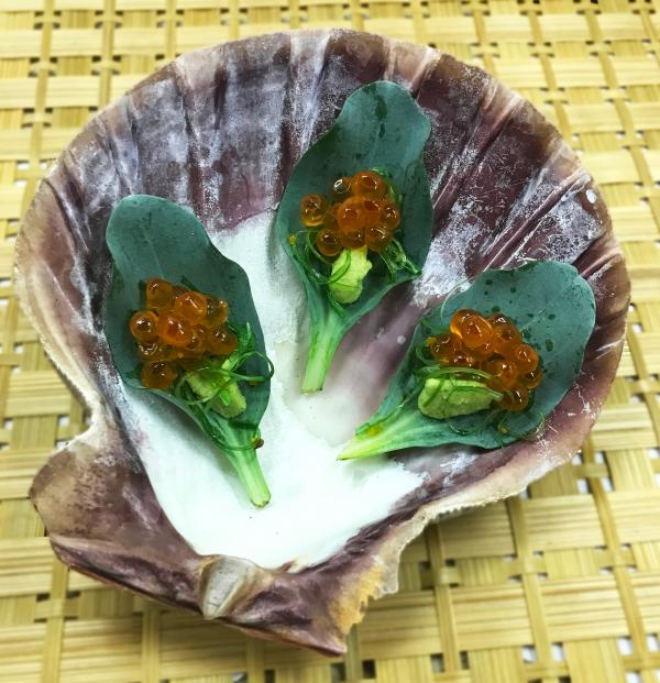 plante huître dans un coquillage