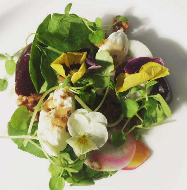 plante huître plat décoré