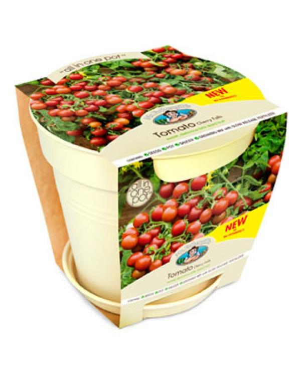 planter des tomates cerises pot à tomates