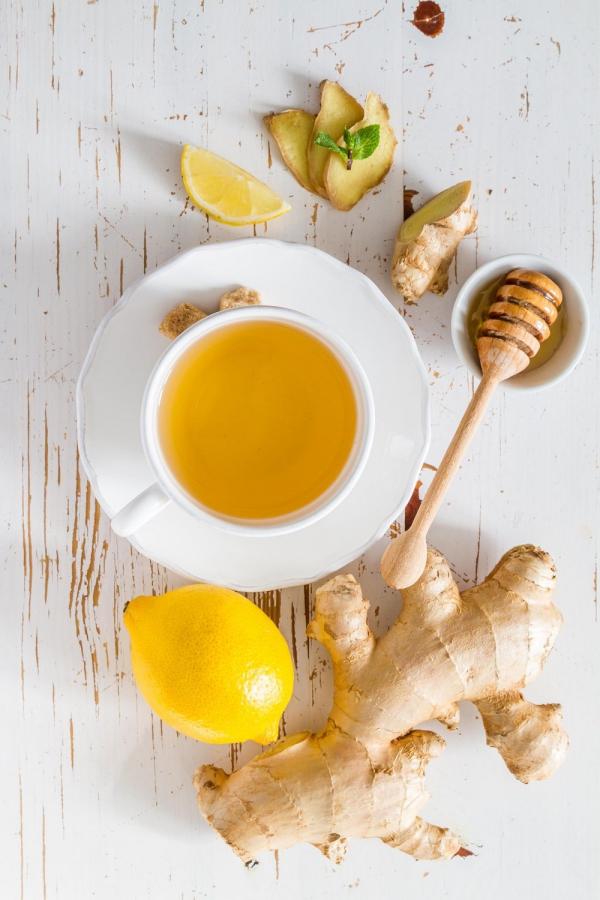 planter du gingembre du thé de gingembre