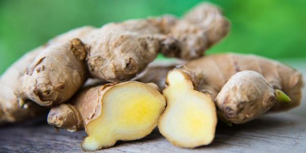 planter du gingembre morceaux solides