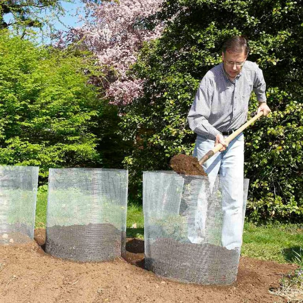 planter les pommes de terre filets métallisés