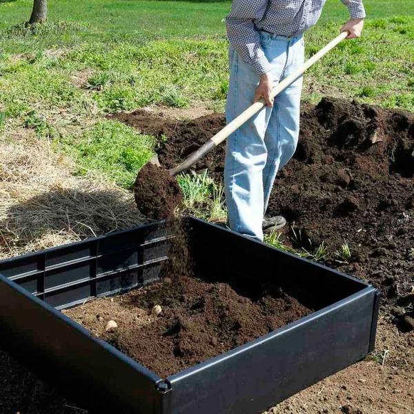 planter les pommes de terre remplir de sol