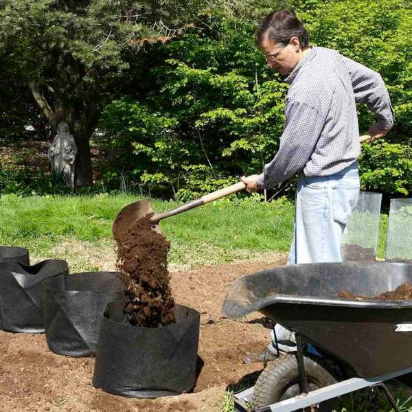 planter les pommes de terre sacs d'achats