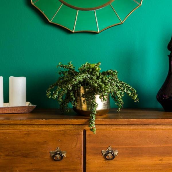 salon peinture vert émeraude placard bois rétro