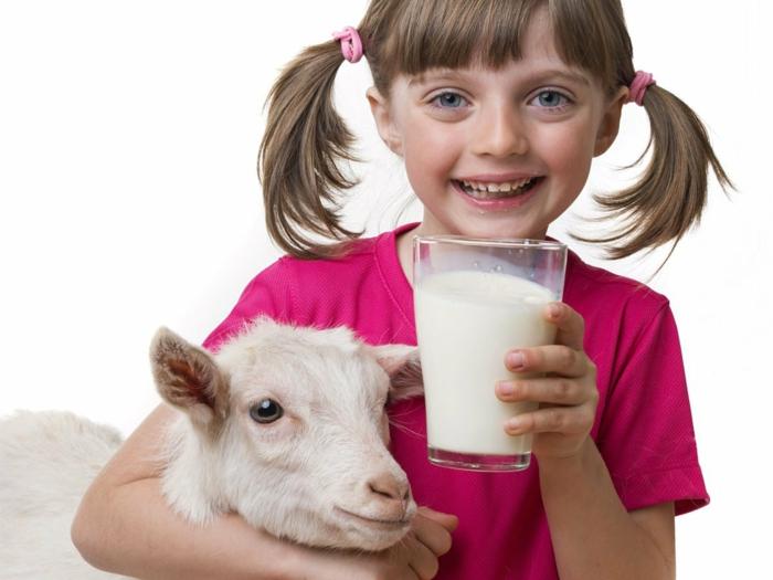 savon au lait de chèvre bienfaits du lait