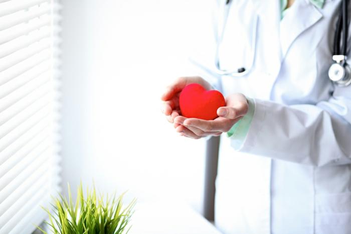 baisser les niveaux de cholestérol avec charbon végétal