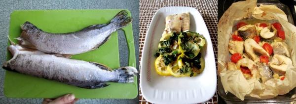 comment diminuer le cholestérol espèces de poissons