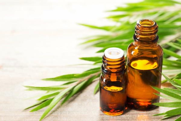 comment utiliser les huiles essentielles aux feuilles minces et longues