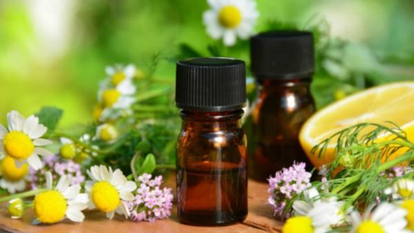 comment utiliser les huiles essentielles camomille des champs