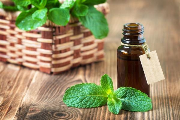 comment utiliser les huiles essentielles de la menthepoivrée