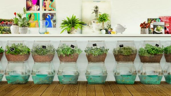 diy jardin à l'intérieur système aquaponique