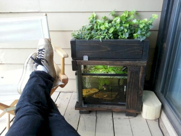 diy système aquaponique balcon