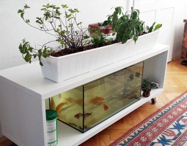 jardinage à l'intérieur système aquaponique