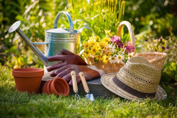 jardinage conseils boîte à outils