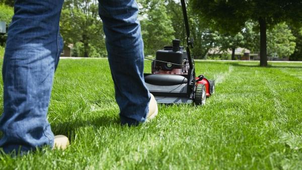 jardinage conseils faucher l'herbe