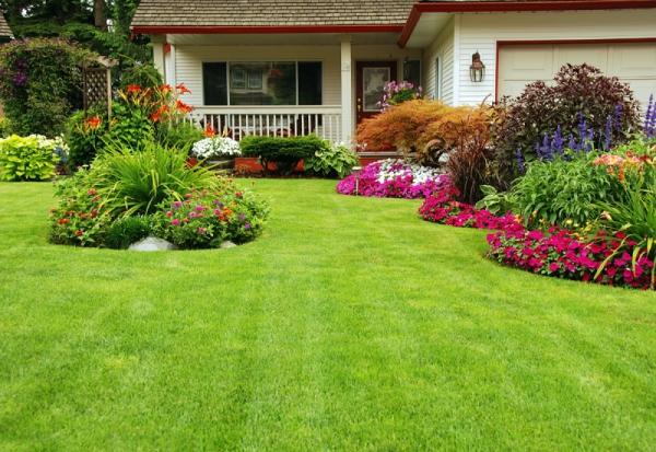 jardinage conseils jardin impeccable
