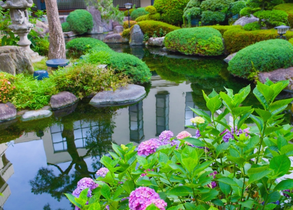 jardinage conseils lac artificiel dans le jardin