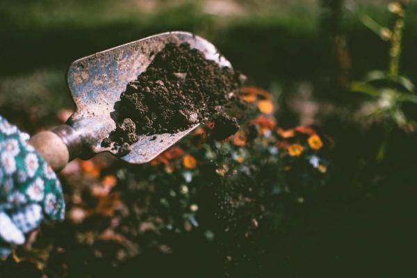 jardinage conseils pelle pour creuser