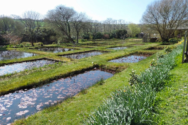 jardinage conseils réservoirs d'eau
