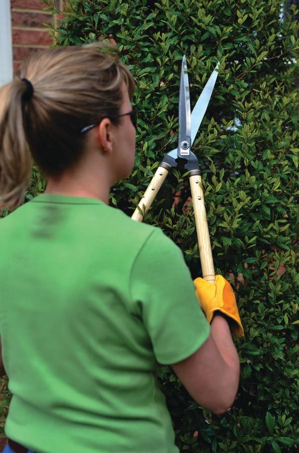 jardinage conseils utiliser le sécateur
