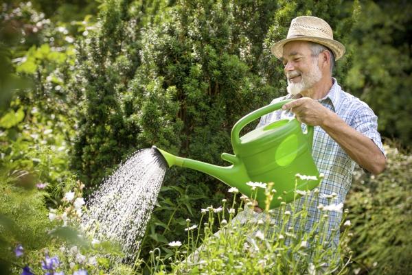 jardinage conseils utiliser un arrosoir