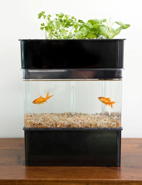 jardinage du futur système aquaponique