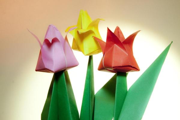 origami fleurs et animaux de printemps des tulipes en trois couleurs