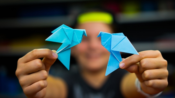origami fleurs et animaux de printemps oiseaux bleus