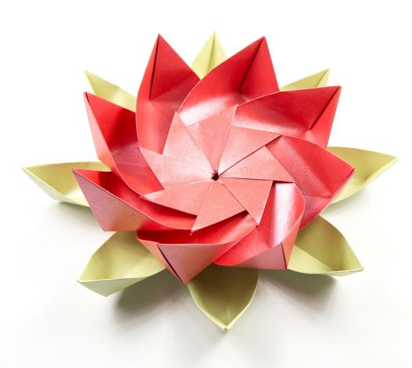 origami fleurs et animaux de printemps un lotus magnifique