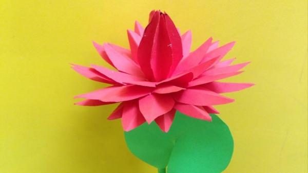 origami fleurs et animaux de printemps un nymphéa rouge