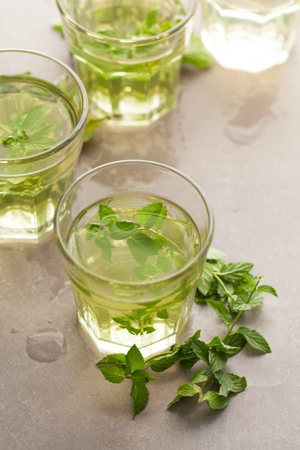 planter de la menthe du thé de menthe