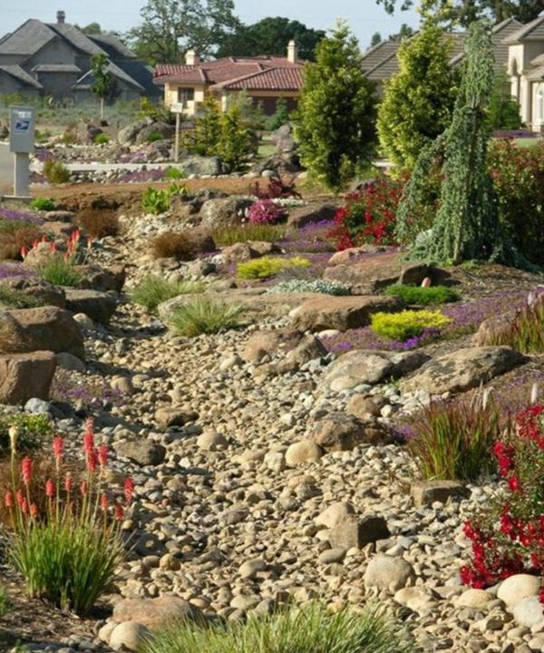 Rivière sèche à créer soi-même dans le jardin plantes