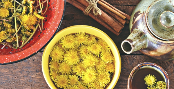 fleurs de pissenlit nettoyées