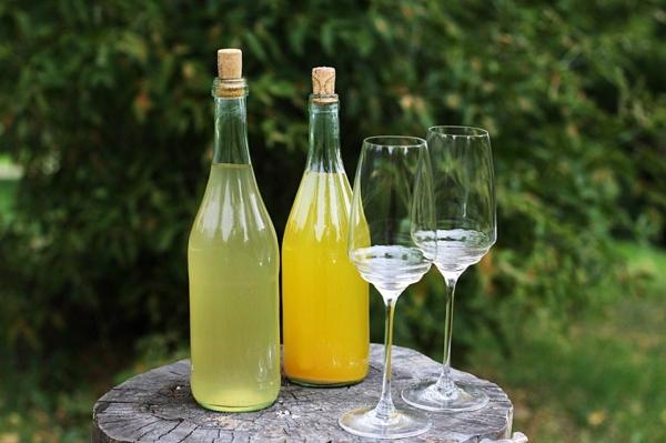 recette vin de fleurs de pissenlit