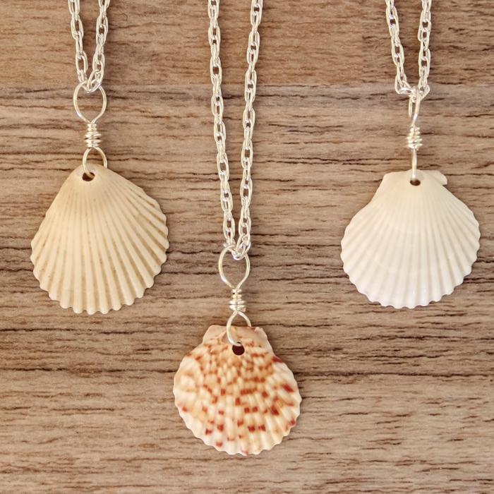 colliers bijoux coquillage