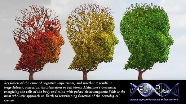 maladie d' Alzheimer causes des troubles cognitifs