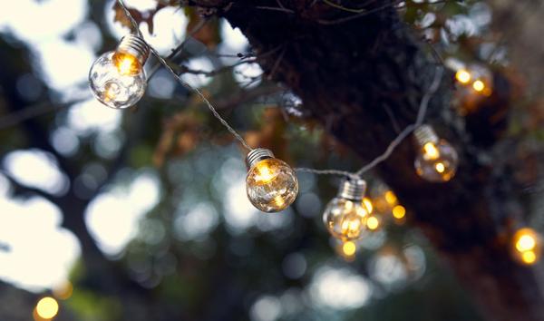 éclairage de jardin câbles aux ampoules